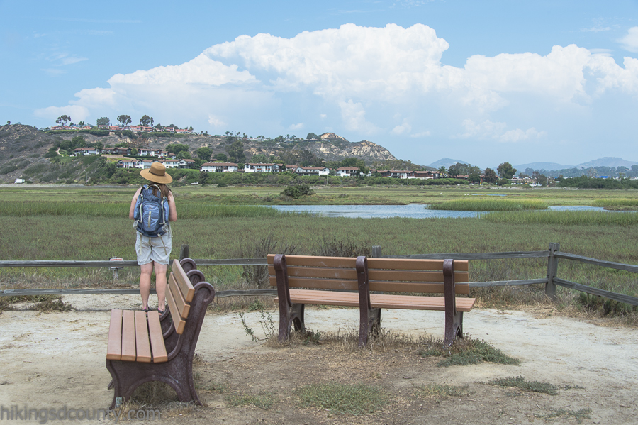 View from the peninsula at San Elijo Lagoon