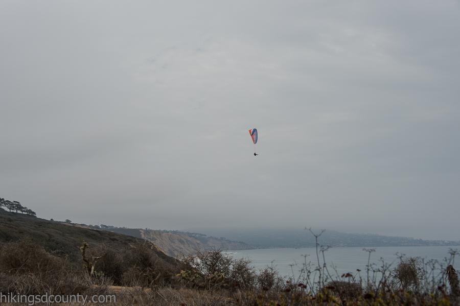 A paraglider soars over Torrey Pines