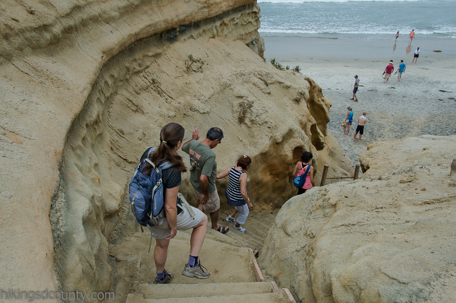 The narrow staircase leading to the beach at Torrey Pines