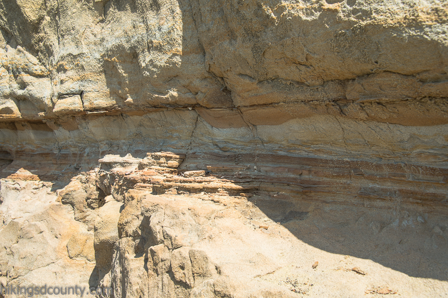 Exposed geological strata along the Bayside Trail at Cabrillo National Monument
