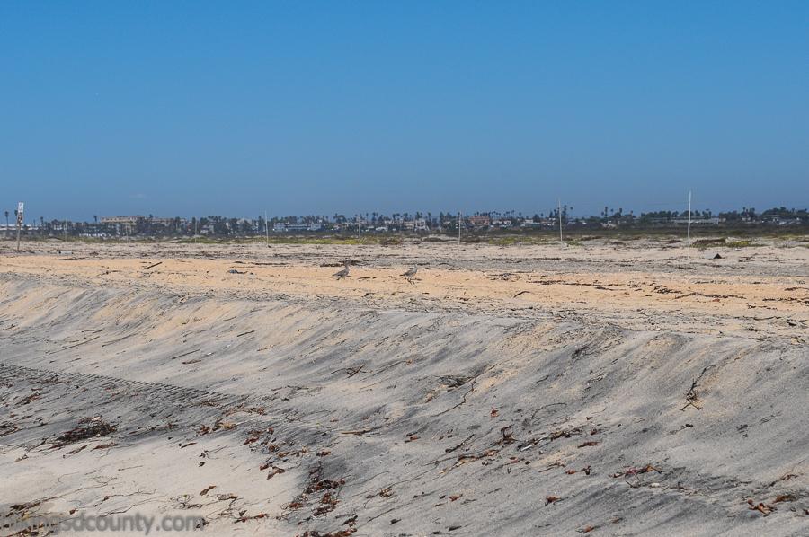 The beach along the North Coast Trail at Tijuana River Estuary
