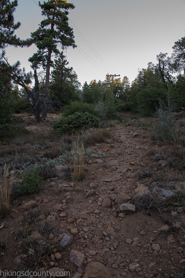 A gradual ascent along the Pacific Crest Trail
