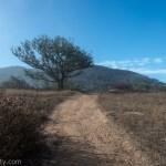 Clear skies at Daley Ranch