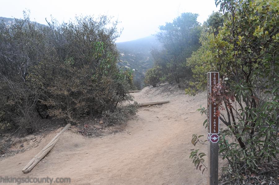 Rejoining the main Iron Mountain Peak Trail