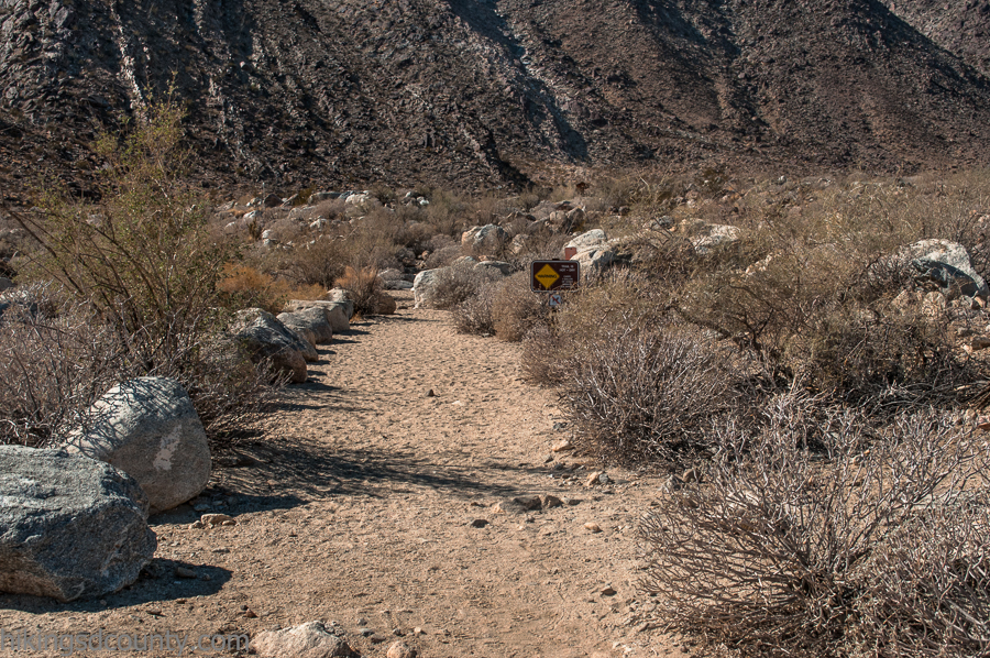 Beginning of the Palm Canyon Trail