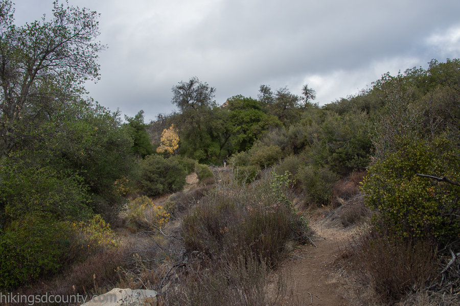 Headed up the Espinosa Trail along the creek
