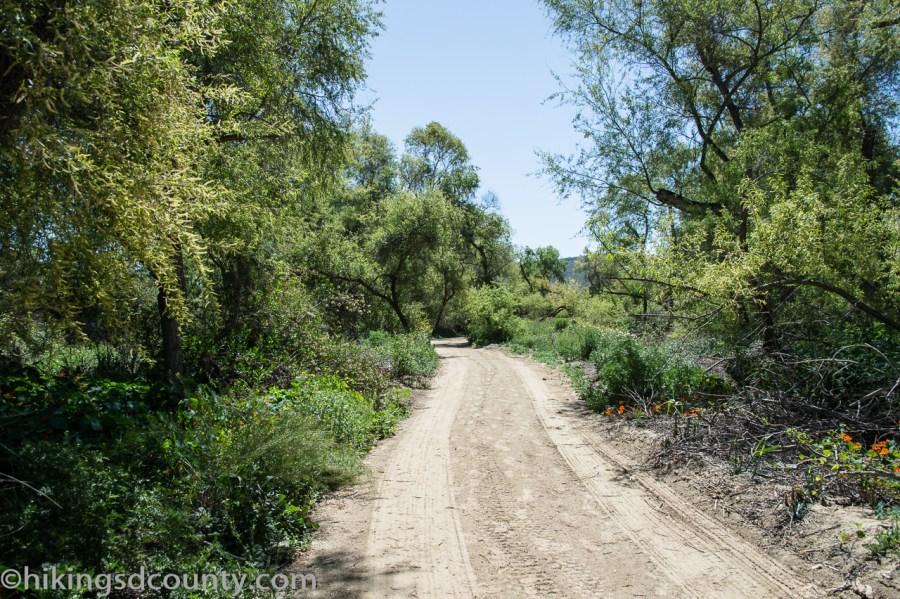 20160331_DSC0304-Tijuana_River_Valley