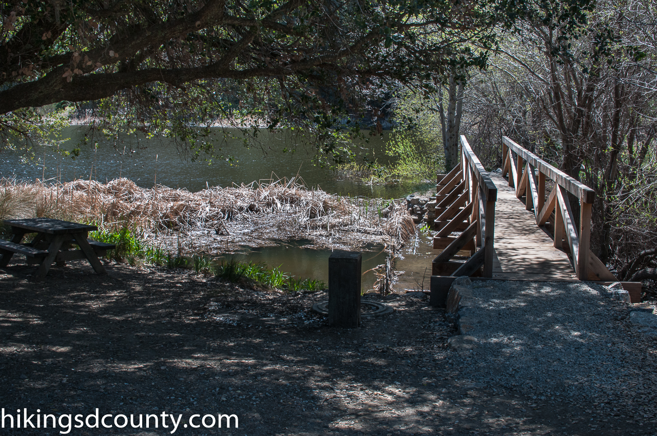 Thunder Spring And Chimney Flats Loop Palomar Mountain State Park