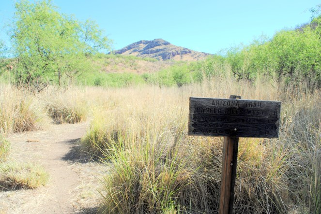 Looking back from Harshaw Road Trailhead.