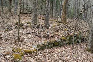 Stone house foundations