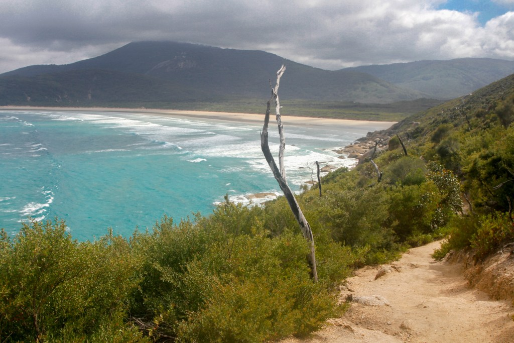 Final section back into Norman Beach (Tidal River)