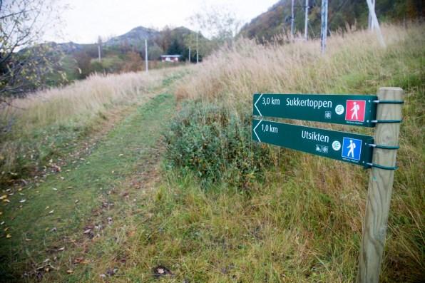 Start of the Sukkertoppen hike