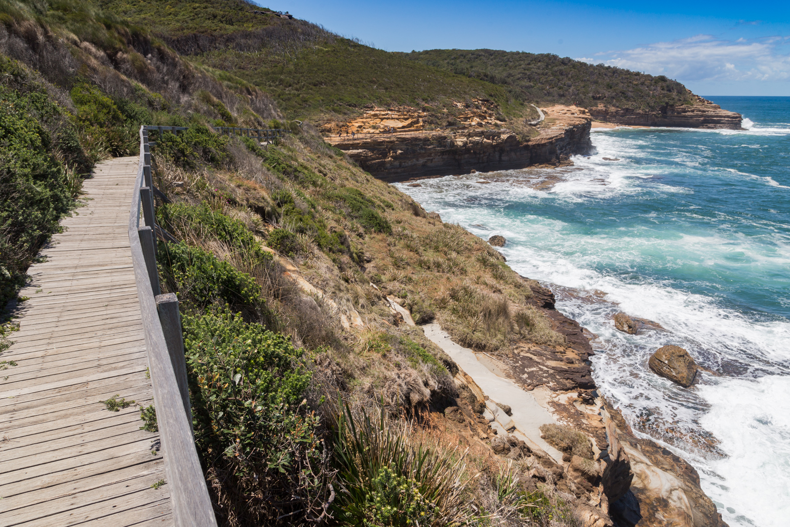 mg 6726 lr Guide to Bouddi National Park