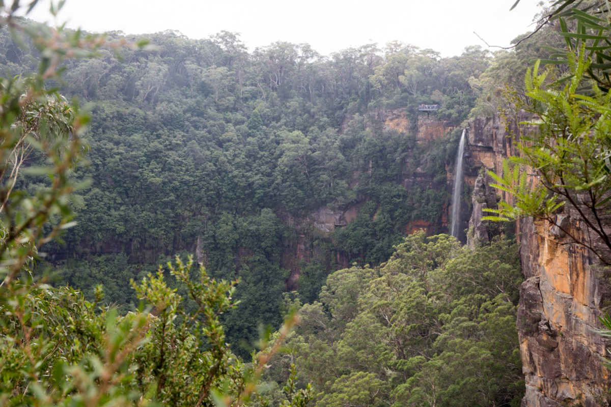 Fitzroy Falls from Warrawong Lookout