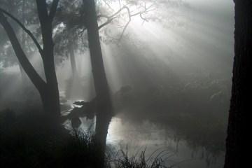 hpim4043 lrp Six Foot Track (Katoomba to Jenolan Caves)
