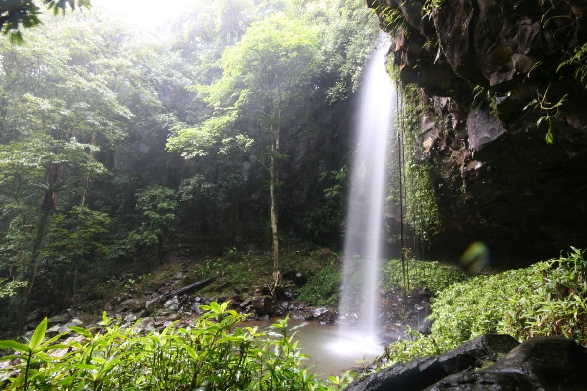 img 6051 Crystal Shower Falls (Wonga Walk)