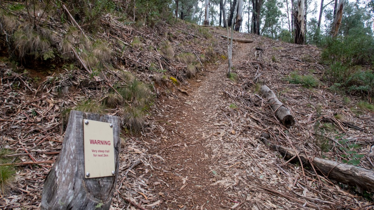 Steep trail up to Mount Gingera