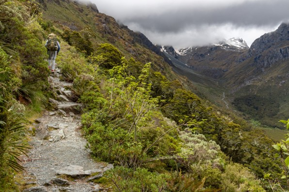 Looking up the Routeburn Track to Emily Peak (Ailsa Mountains)