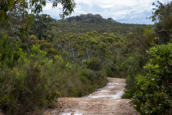 Looking back to Willunga Trig