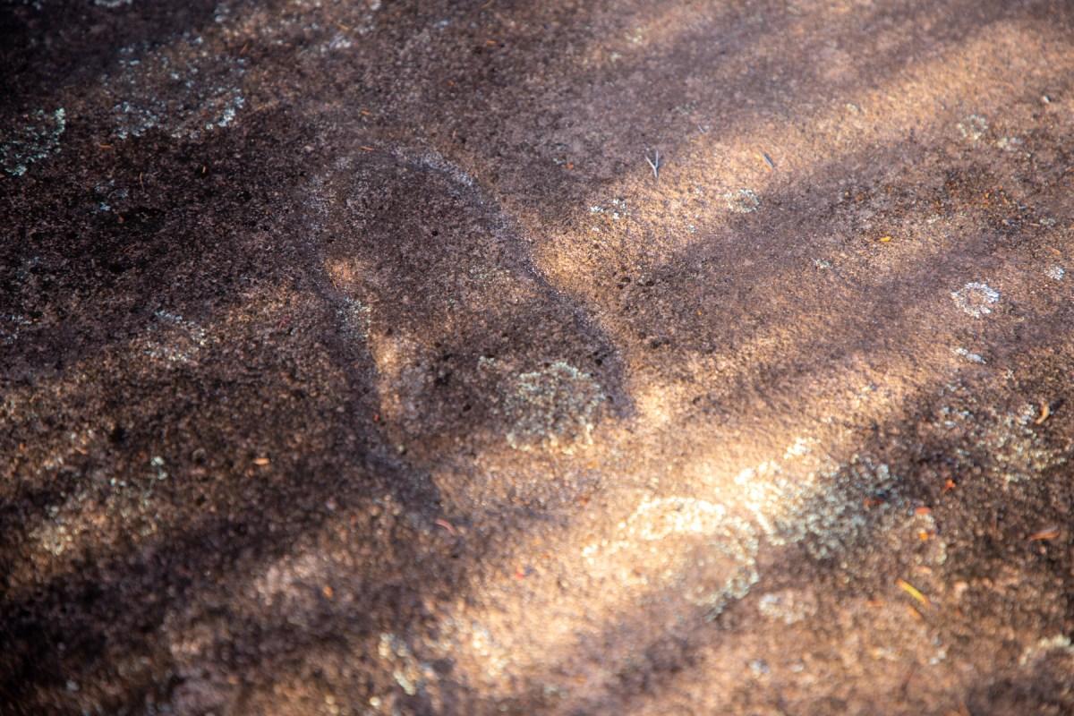 img 6509 lr Slippery Dip Footprint