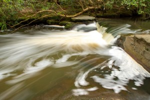 Cascade at The Fishponds