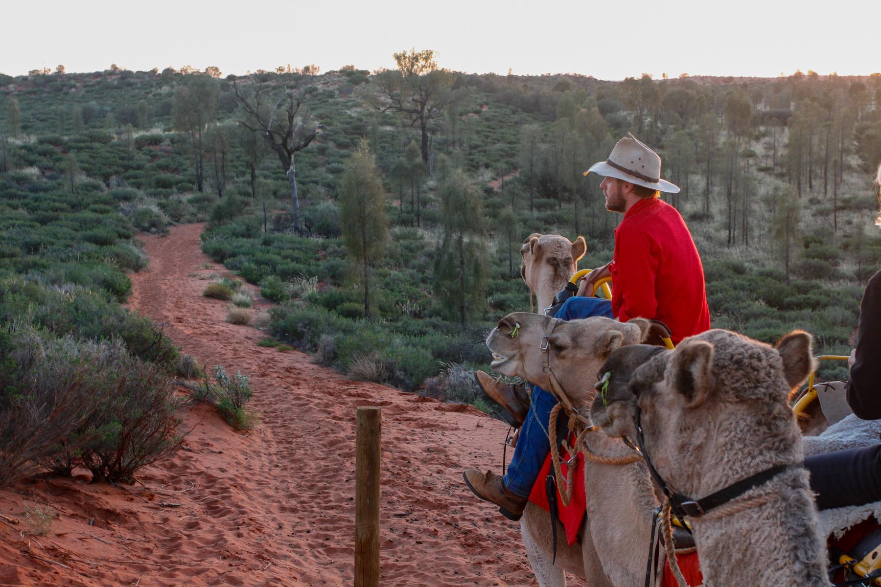 mg 1933 lr What to do in Uluru