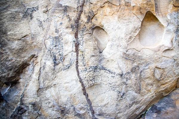 Cave art at Sphinx Trig Cave (Bobbin Head)