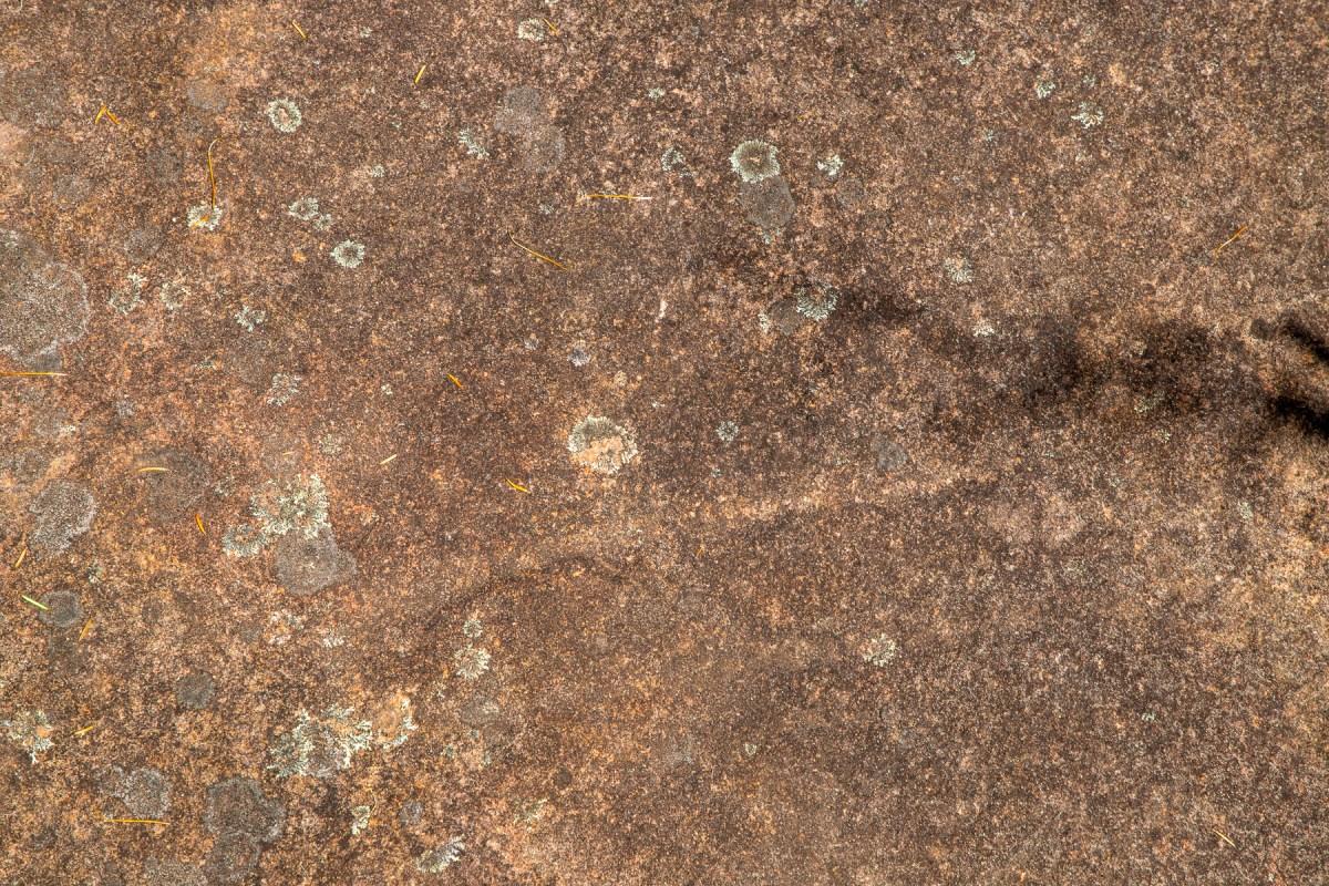 awat6466 lr Photographing Aboriginal rock art