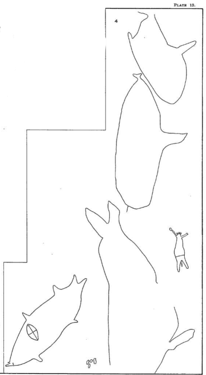 engraving plate xiii fig4 Little Moab Track Whale