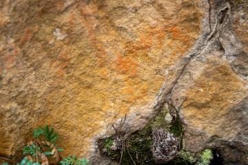 Aboriginal hand stencil near Goochs Crater