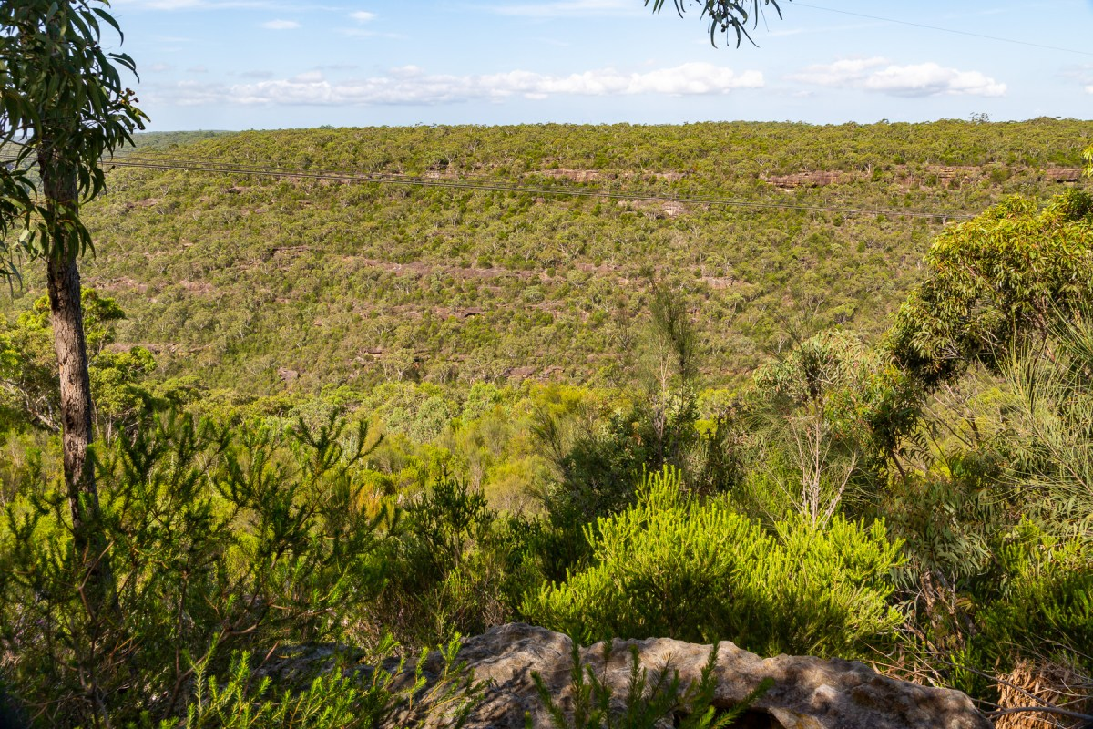 View from the end of the Myall Trail