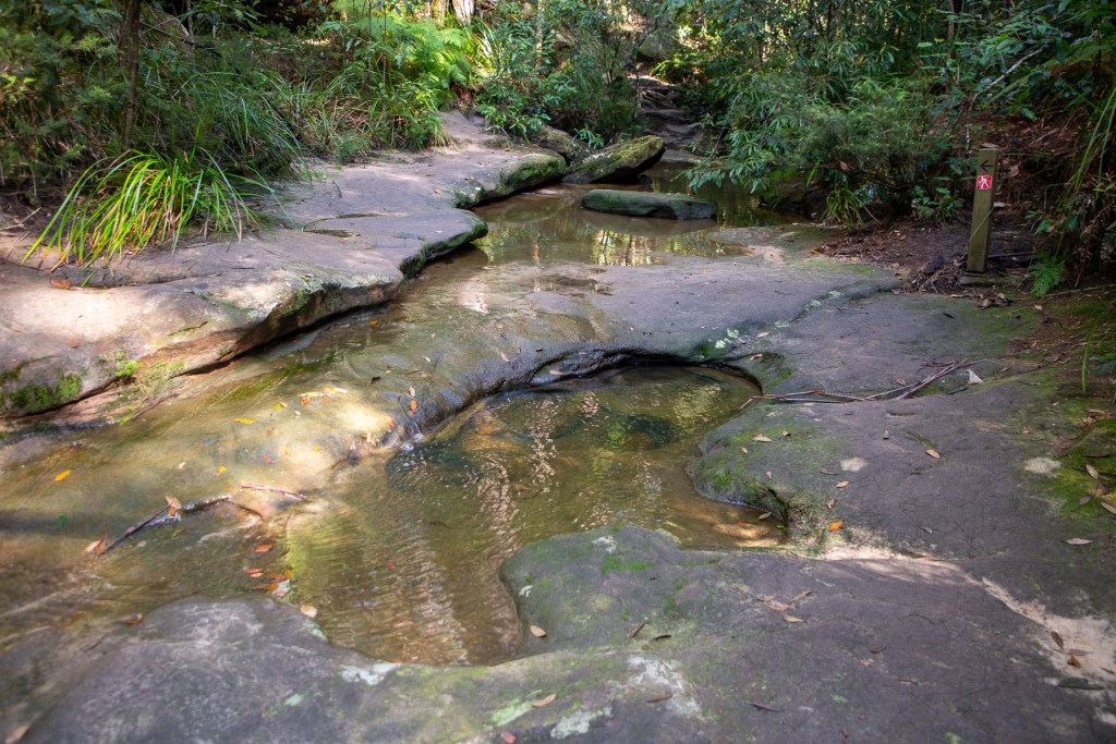 AWAT2425 LR Taffys Rock