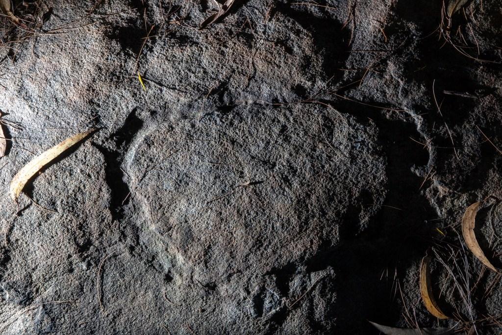 AWAT1502 LR Mt Ku-ring-gai Aboriginal site