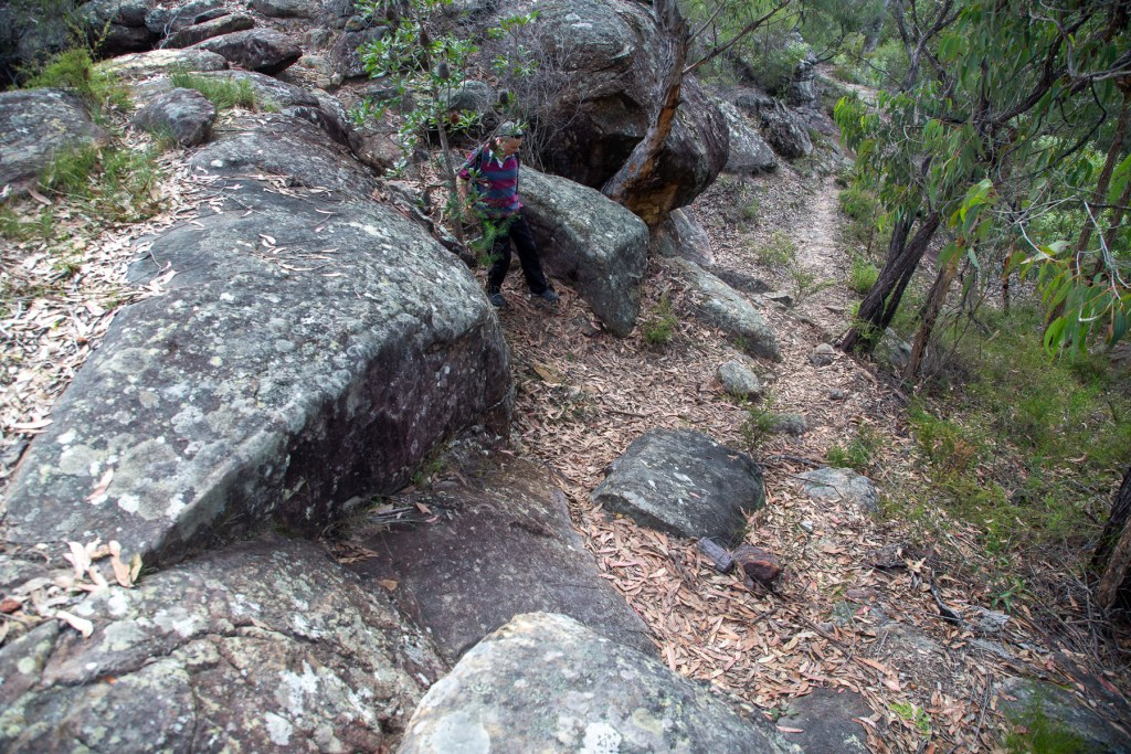 AWAT4287 LR Smugglers Ridge to Marramarra Ridge