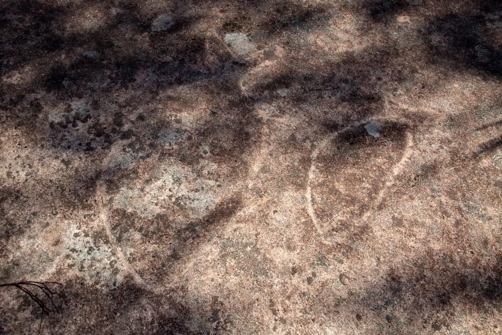 AWAT7980 LR Mooney Mooney Aboriginal Area
