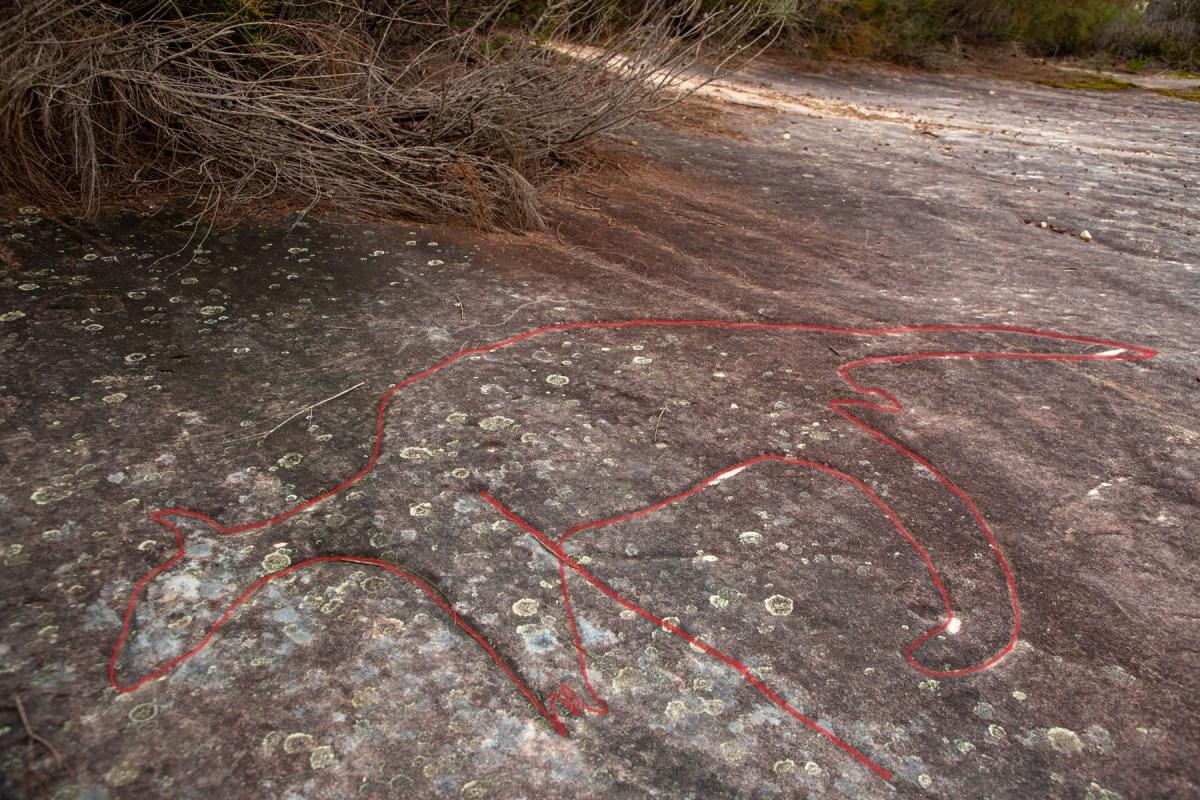 IMG 6013 LR highlighted Wheeler Heights Aboriginal Site