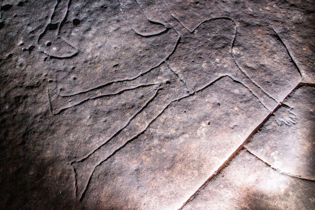 AWAT4038 LR Basin Aboriginal Site