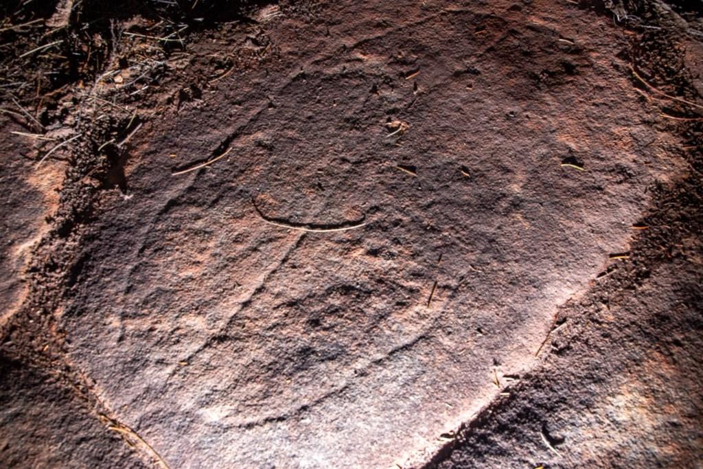 AWAT4450 LR Basin and Mackerel Track Aboriginal sites