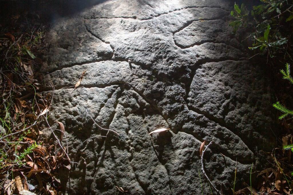 AWAT4797 LR Basin and Mackerel Track Aboriginal sites