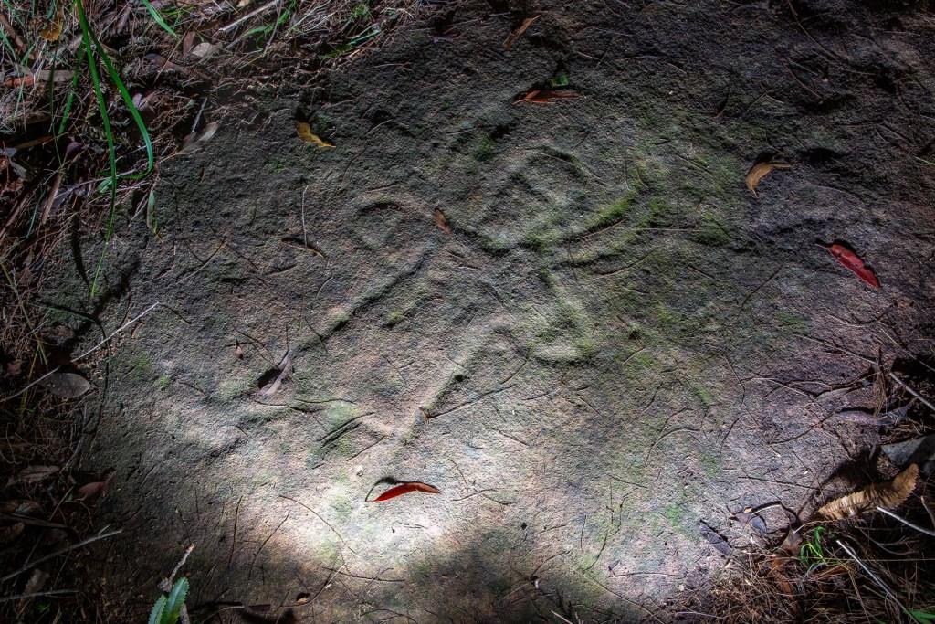 AWAT4941 LR 1 Joalah Firetrail Aboriginal engraving
