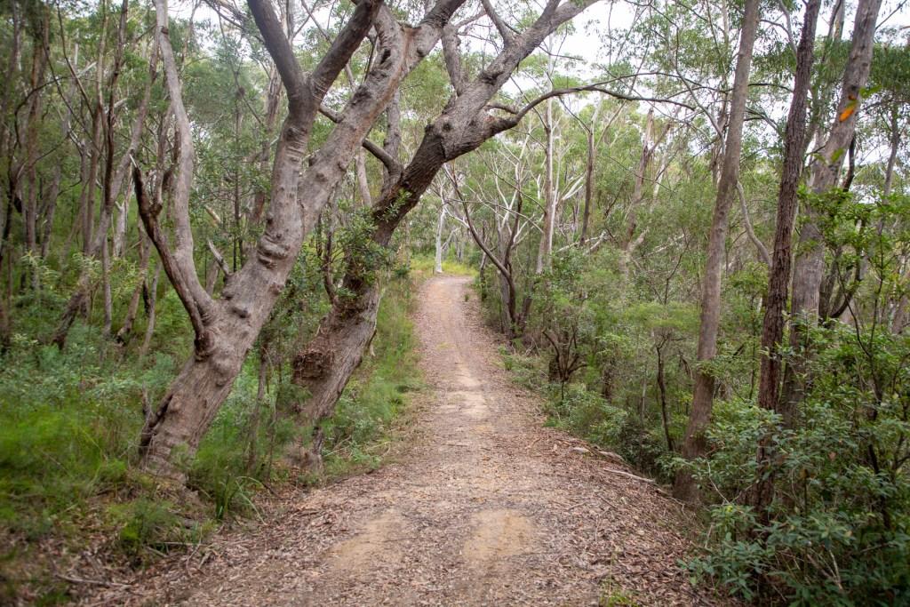 AWAT4969 LR Sams Creek Loop