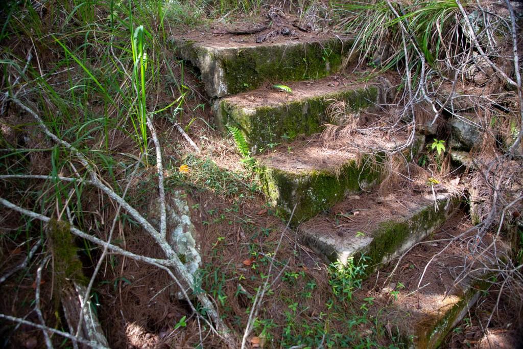 AWAT9587 LR Exploring the history of Cowan Creek