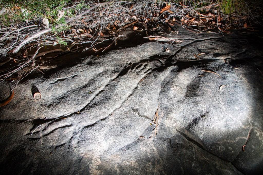 AWAT1239 LR Smiths Creek Engraving Site