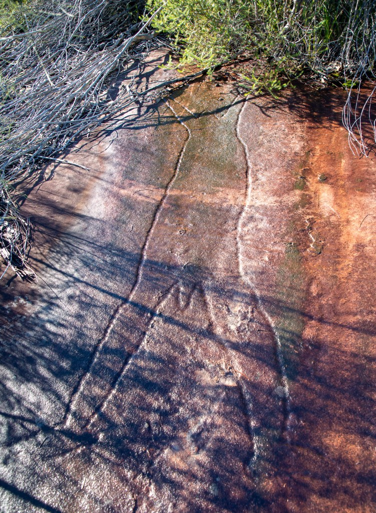 AWAT8970 LR Mount Murray Anderson Aboriginal engraving sites