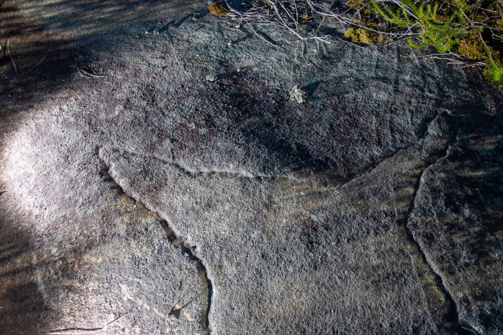 AWAT9283 LR Dolphin Rock Aboriginal engraving