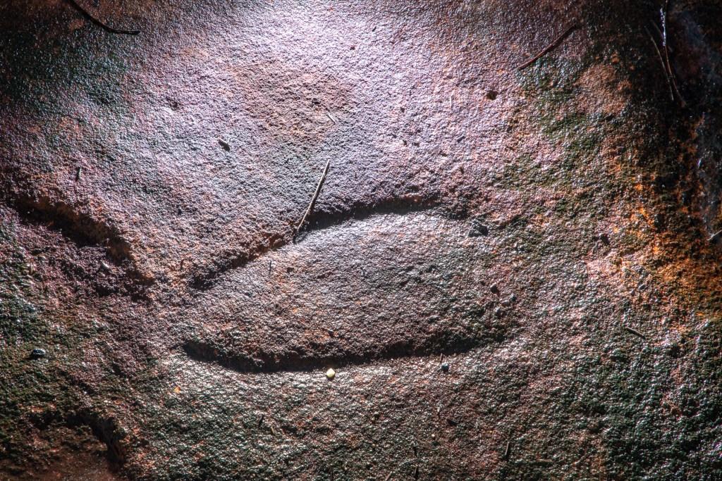 AWAT9860 LR Resolute Track Aboriginal engraving sites