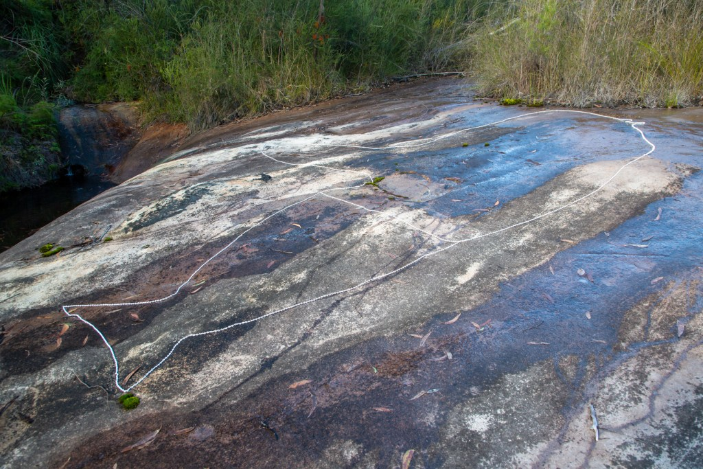 AWAT0013 LR Cotton Tree Creek engraving site