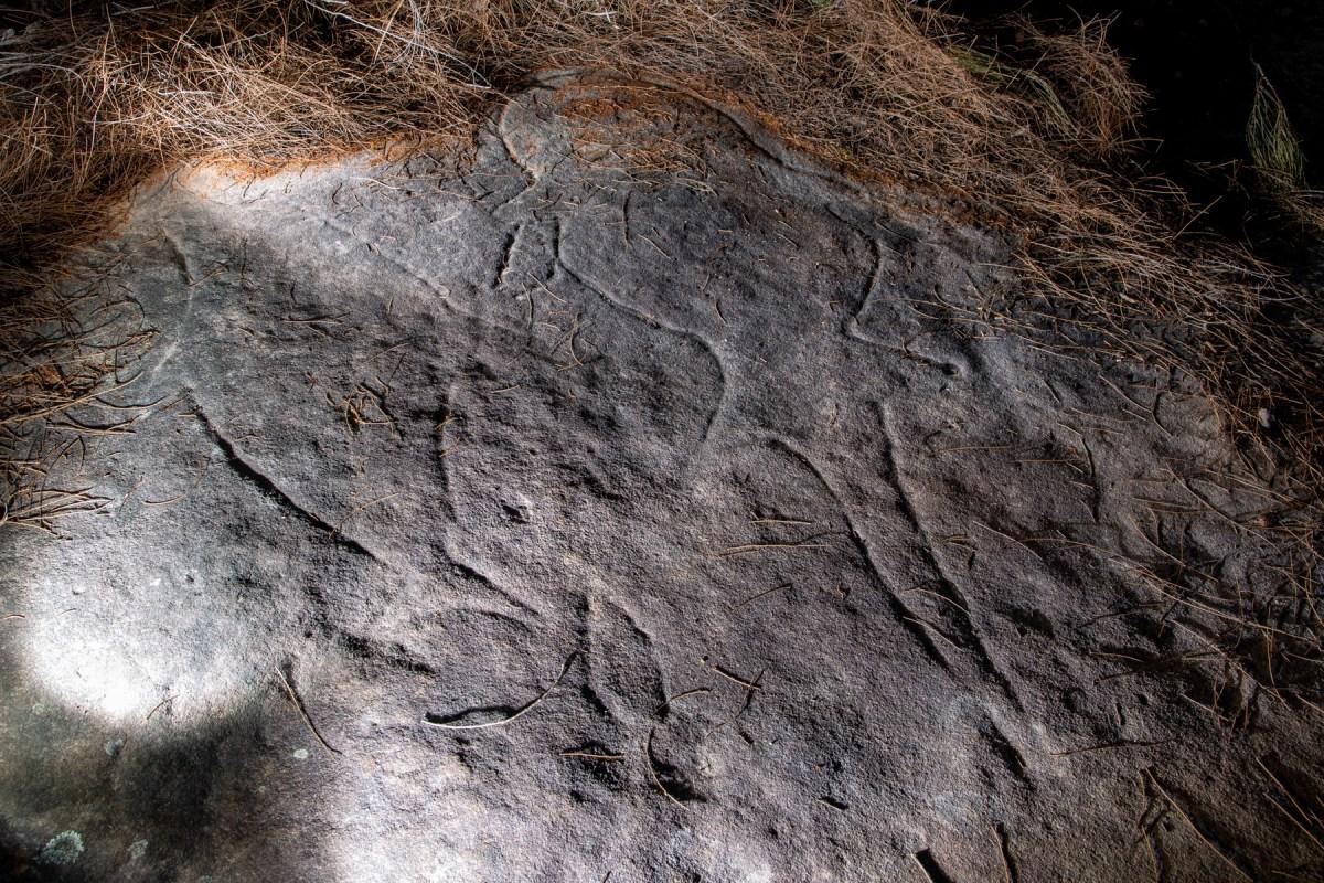 AWAT0765 LR Wheeler Heights Aboriginal Site