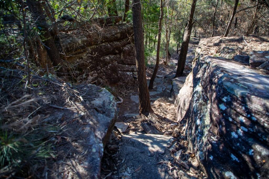 AWAT0779 LR Smiths Creek Loop