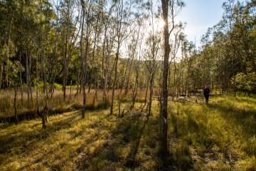 AWAT0818 LR Smiths Creek Loop